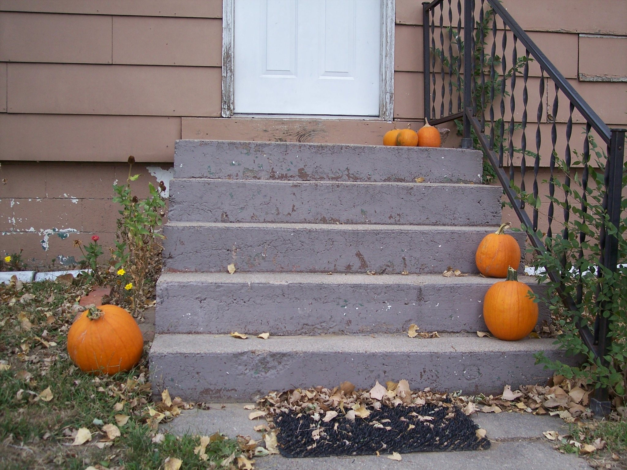 Pumpkin Day 151 Front Steps